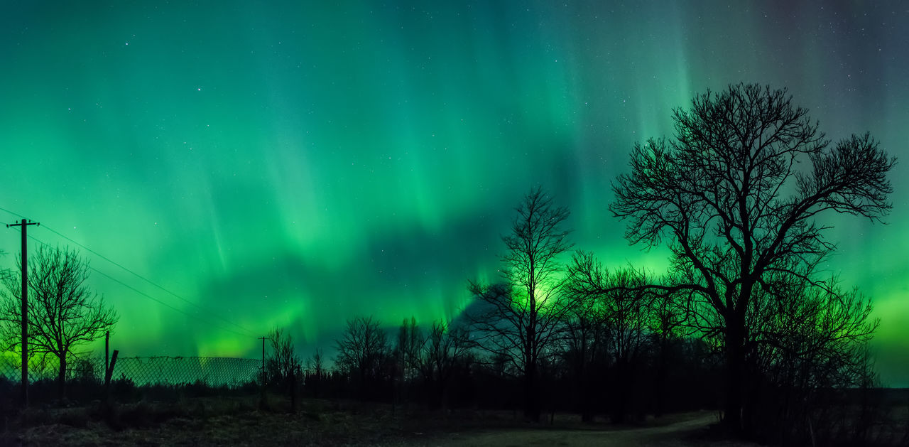 Aurora Borealis 18.03.15 Astronomy Aurora Polaris Awe Beauty In Nature Constellation Galaxy Green Color Illuminated Landscape Natural Phenomenon Nature Night No People Outdoors Scenics Sky Space Space And Astronomy Star - Space Tranquility Tree Winter