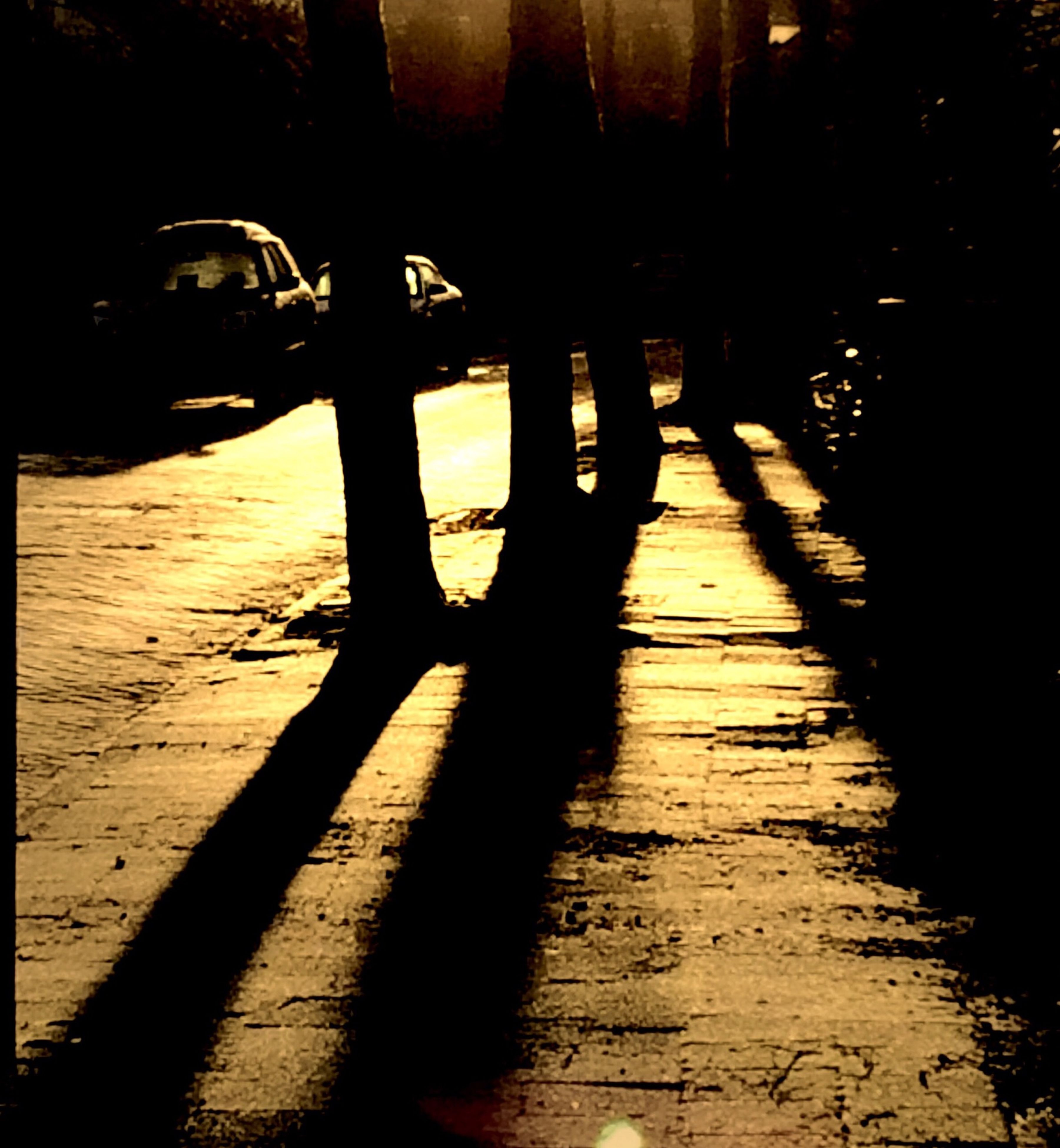 silhouette, shadow, sunlight, sunset, the way forward, street, sidewalk, sun, outdoors, footpath, transportation, walkway, nature, tranquility, built structure, empty, wood - material, in a row, dark, no people