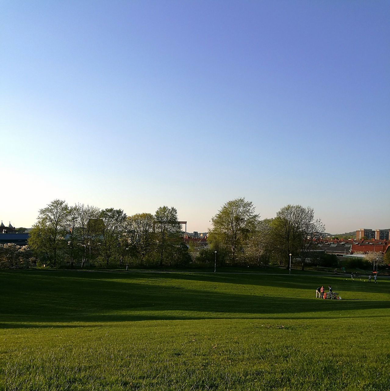 grass, clear sky, green color, nature, tree, field, real people, built structure, architecture, men, growth, outdoors, leisure activity, building exterior, lifestyles, beauty in nature, day, landscape, togetherness, sport, city, sky, people