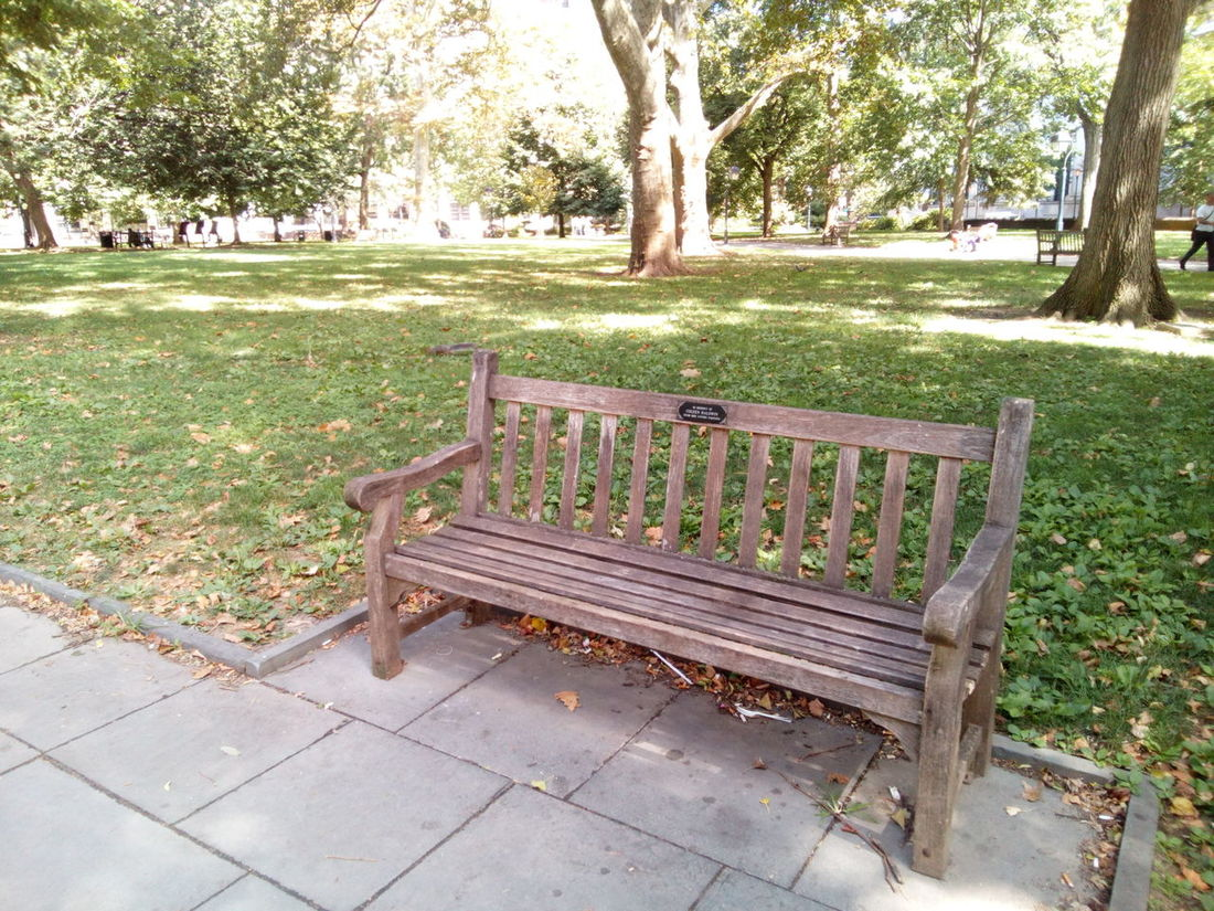 Park City Park Park Bench Tranquility Tranquil Scene Tranquil