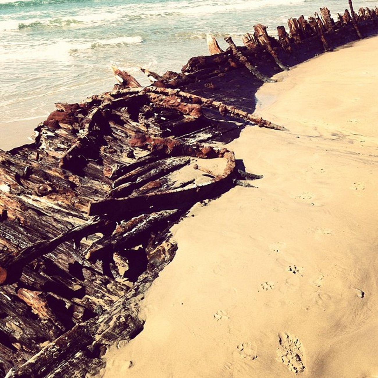 Ship Shipwreck Buster Ocean beach beauty