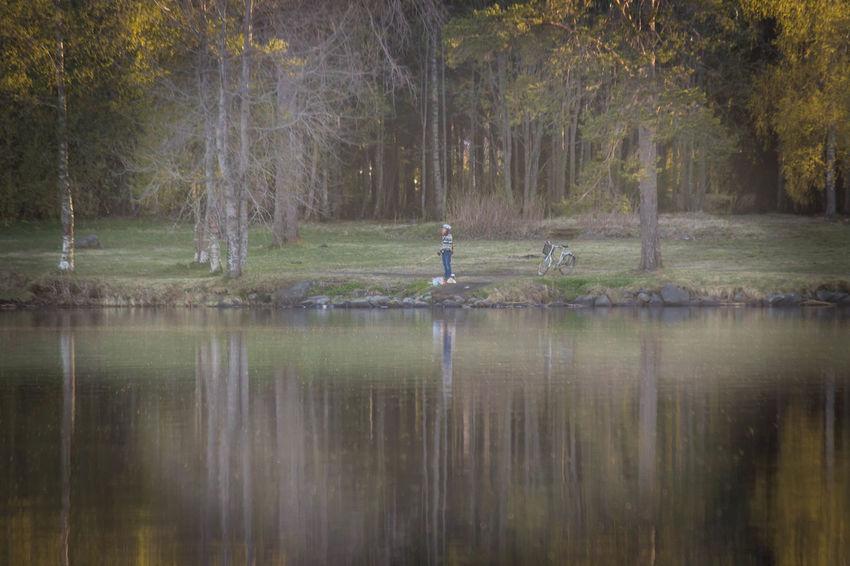 Beauty In Nature EyeEm Best Shots EyeEm Masterclass EyeEm Selects Forest Grass Lake Landscape Nature Outdoors Reflection Scenics Tranquil Scene Tree Water