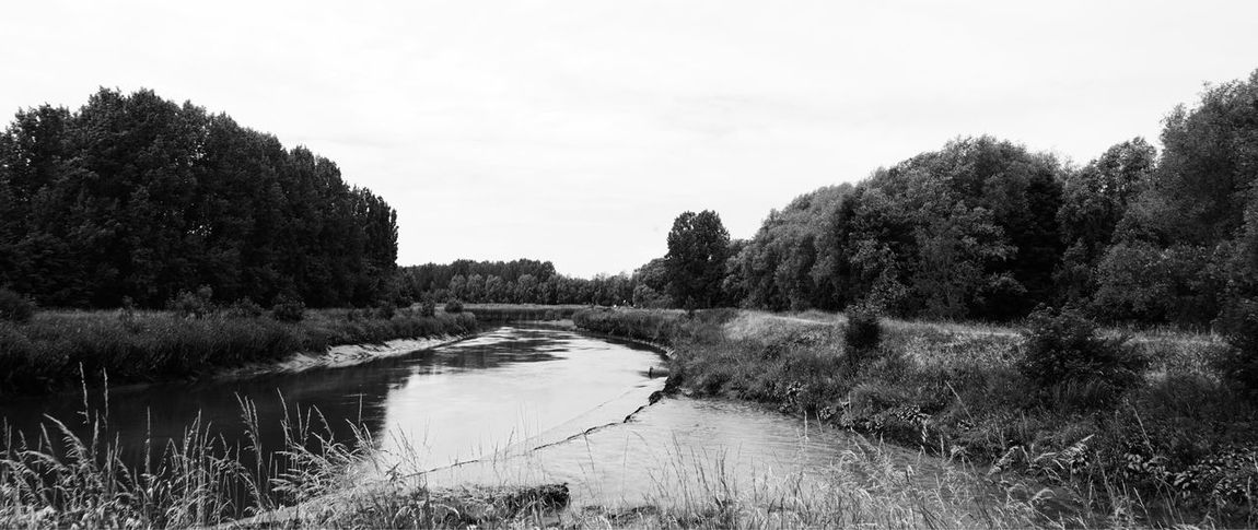 Tree Nature Water Tranquil Scene Tranquility Scenics No People Growth Grass Outdoors Sky Beauty In Nature River Plant Day Landscape Black & White EyeEm Gallery Monochrome Black And White Countryside Country Living Nature Photography