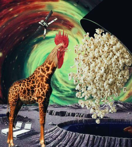 Art Colors Brazil Hi! Colagemdigital Animals Psicodelic Goiânia Universe Criativity Photo Urban Art Forms ArtWork