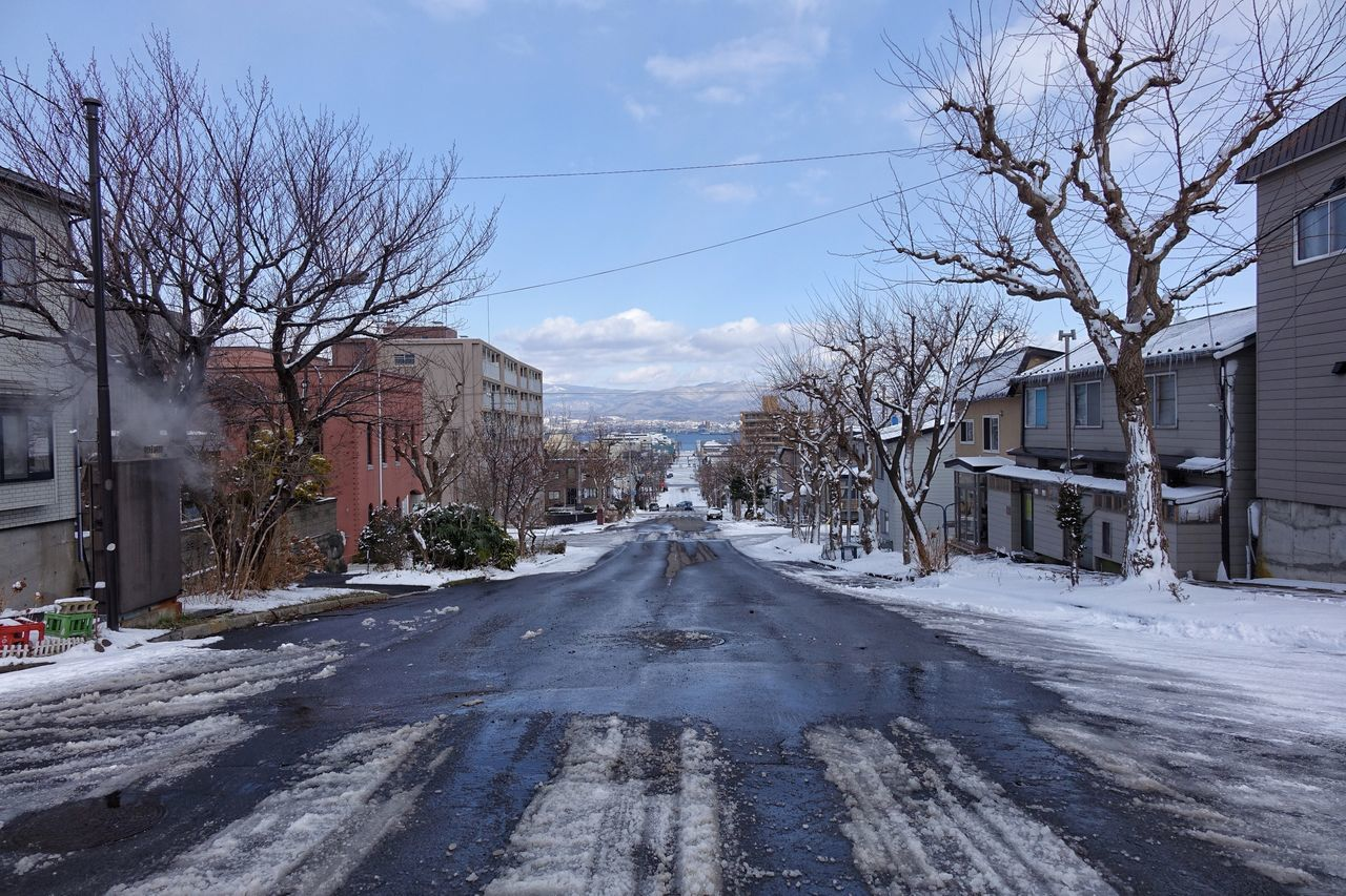 Road Tree Sky Snow Outdoors Bare Tree Winter Built Structure Architecture City Cold Temperature Cityscape Hakodate