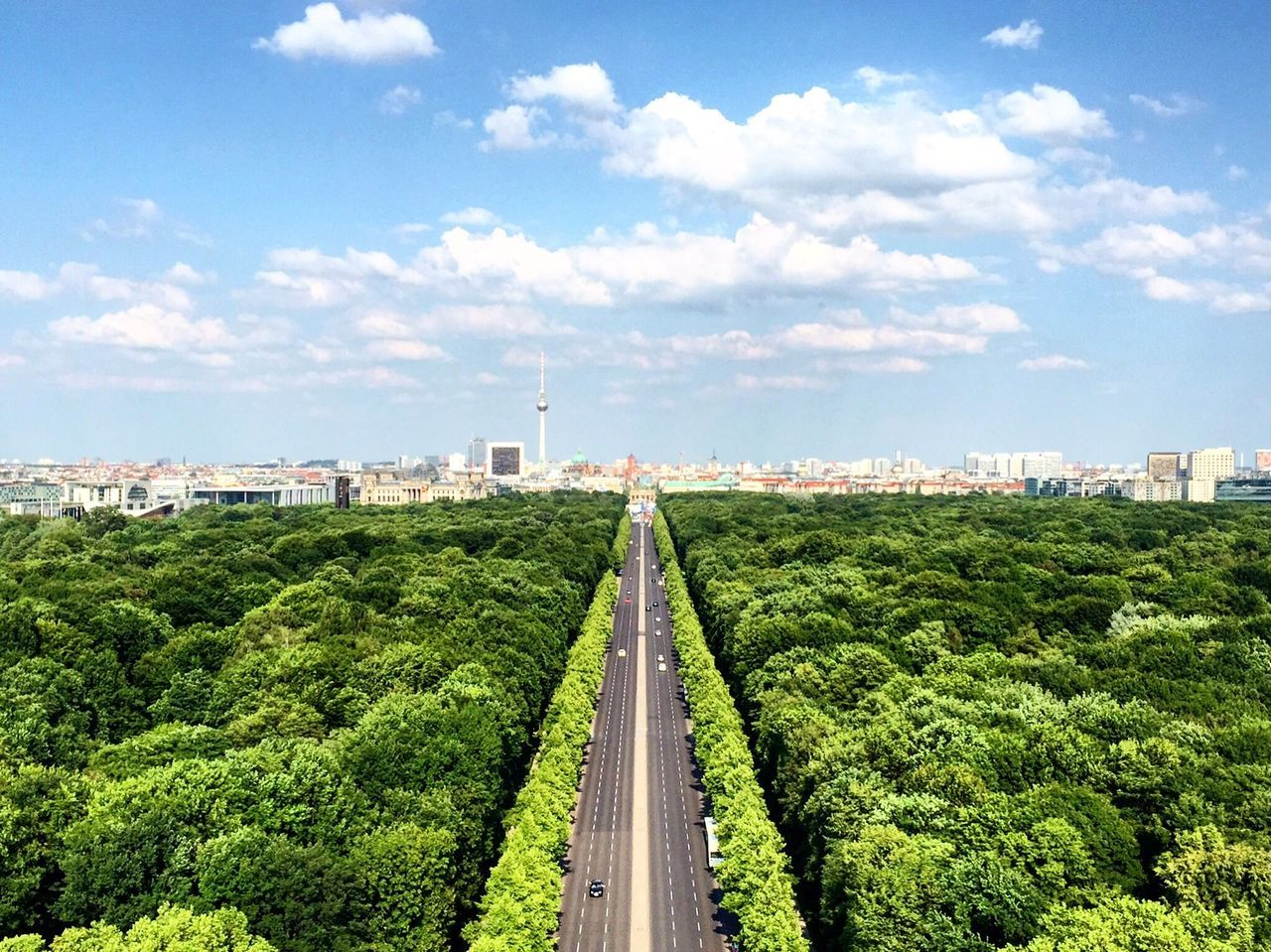 Adapted to the City built structure sky Cityscape Tree cloud - sky City Green color outdoors Nature highway