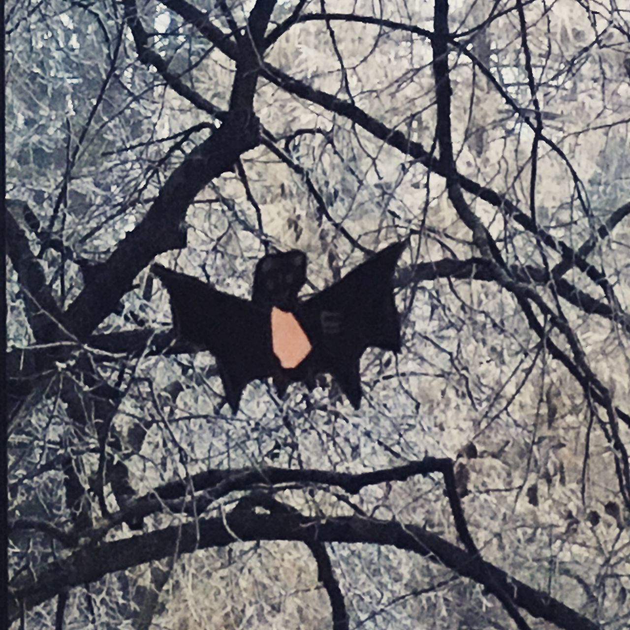 Bare Tree Batman Branch Close-up Creativity Handicrafts Outdoors Tree Winter Wonderland