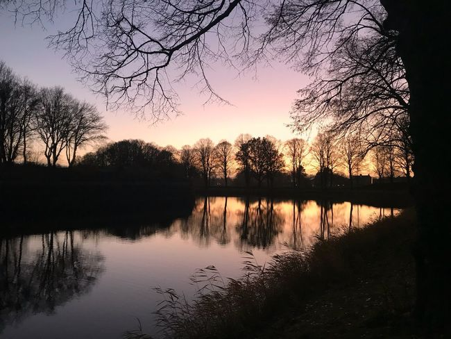 Sunset Naarden Sunset Reflection Tree Silhouette Lake Tranquil Scene Water Beauty In Nature Tranquility Nature first eyeem photo