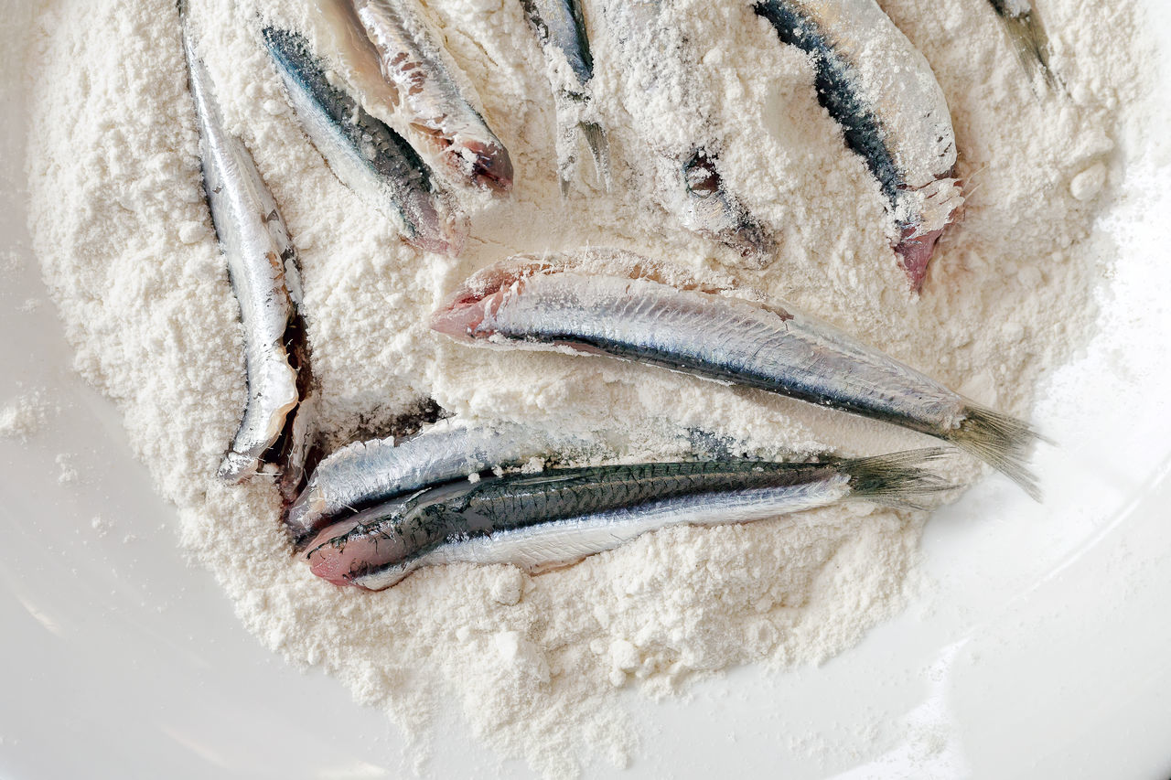 Breaded anchovies, clean and ready to be cooked. Anchovies in the dish filled with white flour. To fry in oil. Anchovies Breaded Close-up Cooked Day Fish Food Food And Drink Food Preparation Freshness Homemade Italian Cuisine Meal No People Raw Food