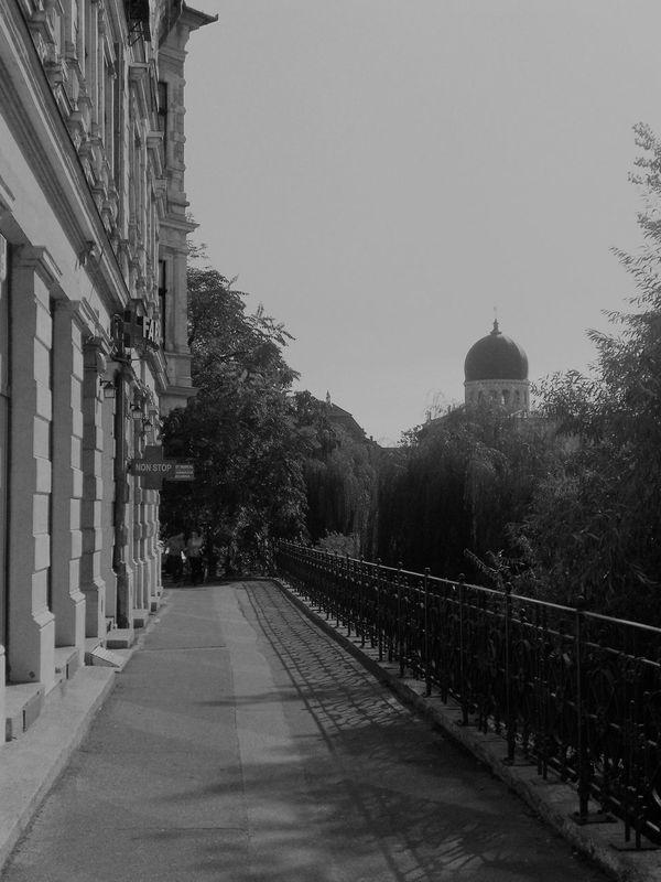 Architecture Travel Destinations Building Exterior Outdoors Day City Visit Bihor 1900's Buildings 1900 Nagyvárad Oradea,România Architecture City Urban Street Romania Tourism Buildings Old Black & White Sinagogue Jewish