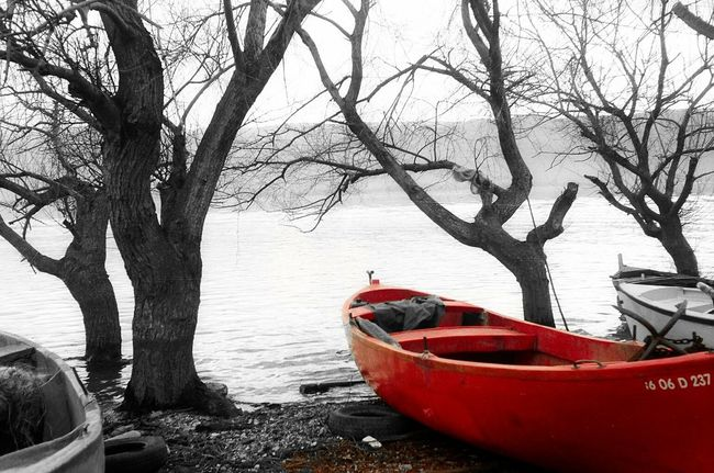 Melancholic Landscapes Red The Lake