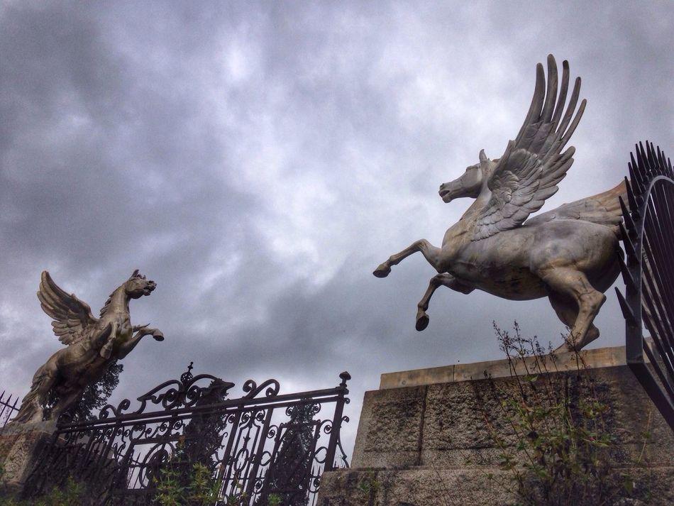 Beautiful stock photos of unicorn, Animal Representation, Art, Art And Craft, Cloud - Sky