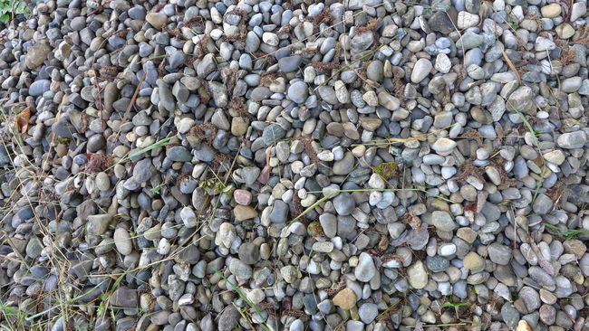 Abundance Backgrounds Beauty In Nature Close-up Color Palette Day Detail Full Frame Grey Heap Large Group Of Objects Natural Pattern Nature No People Outdoors Pebble Repetition Shingle Shingle Beach Shingles Stone Stone - Object Stones Textured  Tranquility
