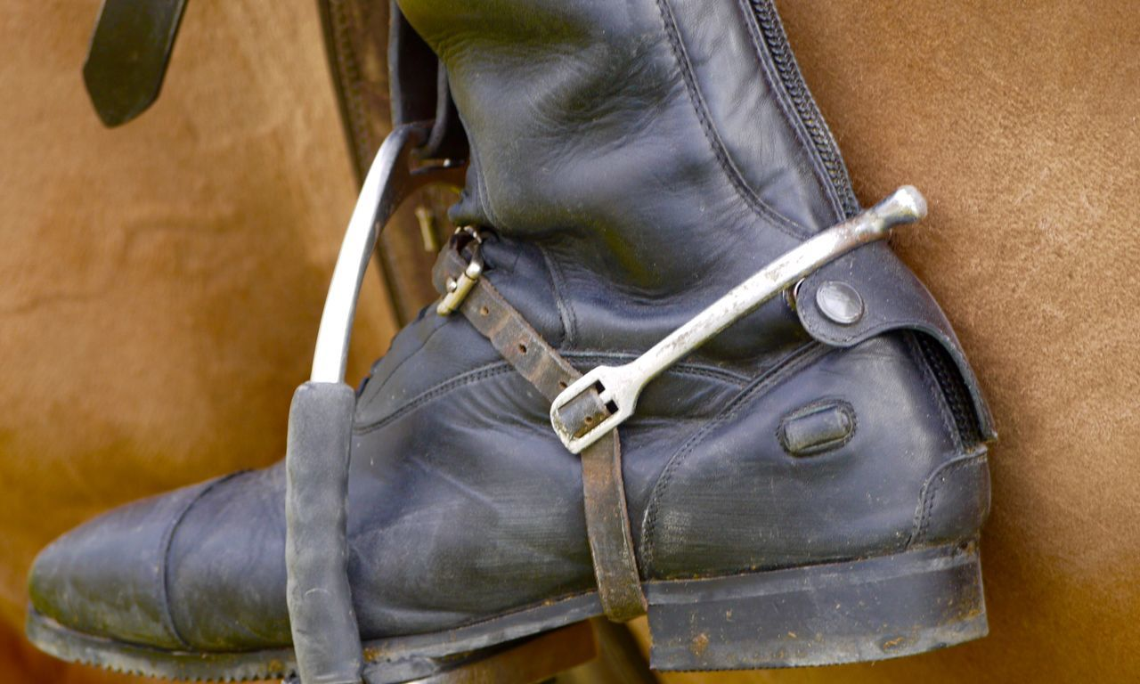 Close Up Day Horse Horses Leather One Person Outdoors Riding Boots Spur Stirrup