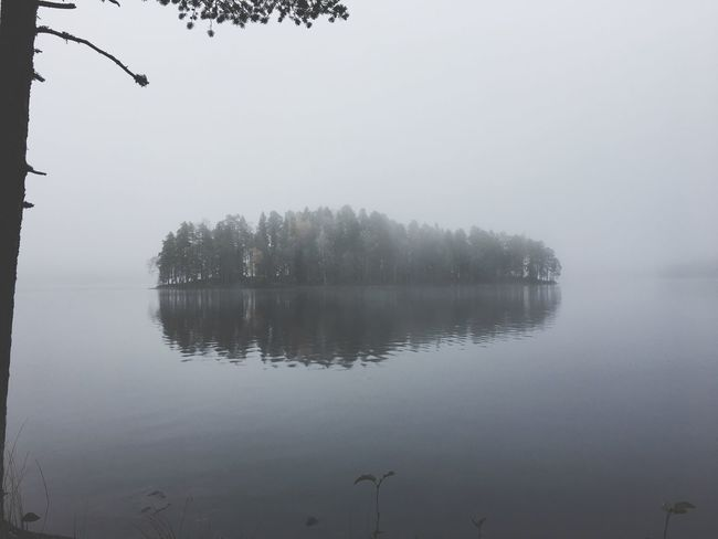 Nature Beauty In Nature Lake Reflection Outdoors Naturepark National Park Fog Island Finland First Eyeem Photo