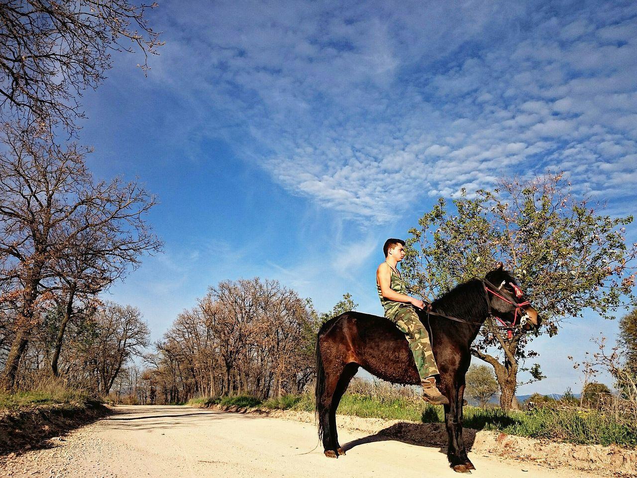 Greece Greek Horse Horses Nature Sky