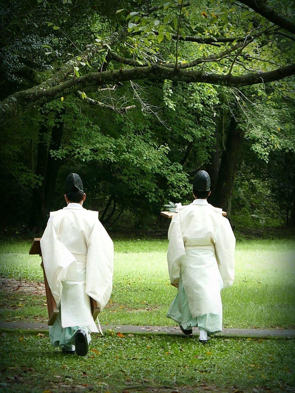 Izumo-taisha Japan Rituals Priest Decate