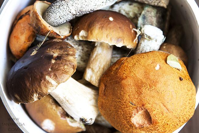 Mushrooms Harvest Catch Food Healthy Food Yummy Tasty Delicious Estonia грибы улов урожай Еда вкусно Еда полезная еда