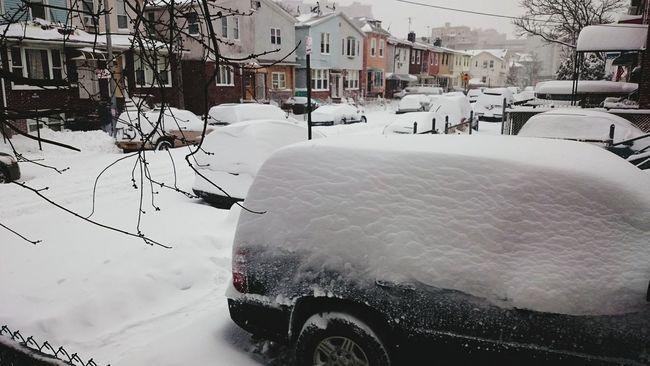 Snowy Brooklyn Nyc