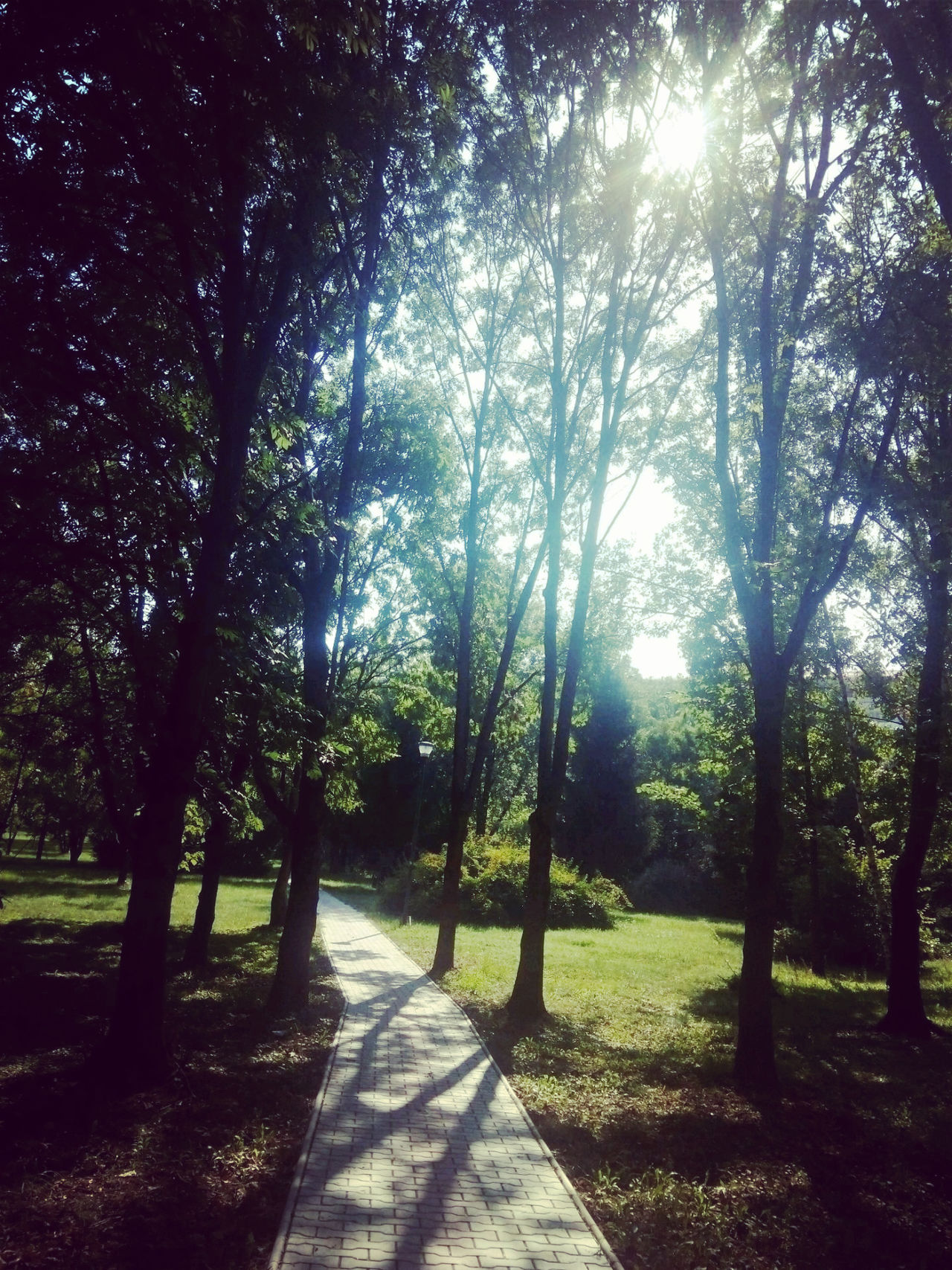 Pathway University Campus Beautiful Aft