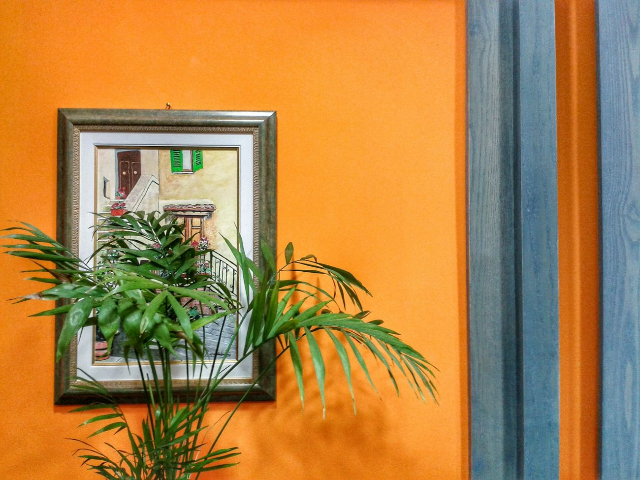 """Living nature"". Piantine Plants Quadro Painting Interior Design Shop Interior Orange Color Blue Blu e Arancione Smartphone Photography Mobile Photography S3mini Camerazoomfx in HDR shooting mode Exposure Bracketing No Edit/no Filter"