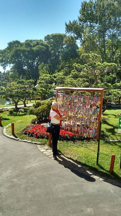 Desejos pedidos prosperidade, tradição ocidental. Argentina Buenos Aires. Garden Jardan Flowers Relaxing Contemplation Jardim Japonês Enjoying Nature