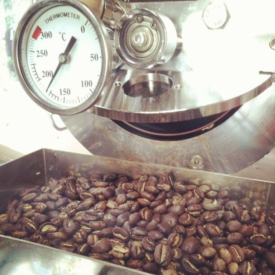 Sidamo Singleorigin Directfairtrade Coffeegeek