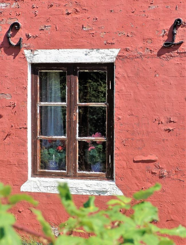 Architecture Building Exterior Built Structure Danmark Day Desolate Fassade Flower House No People Outdoors Plant Red Travelling Window Window Frame