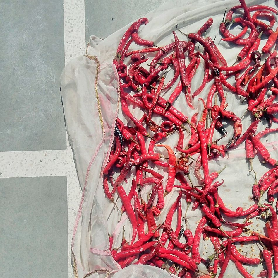 Red chillies put out to dry. Red Chillies Incredible India Village Life Red Close-up No People Day Sunny Indian Spices Spicy Food