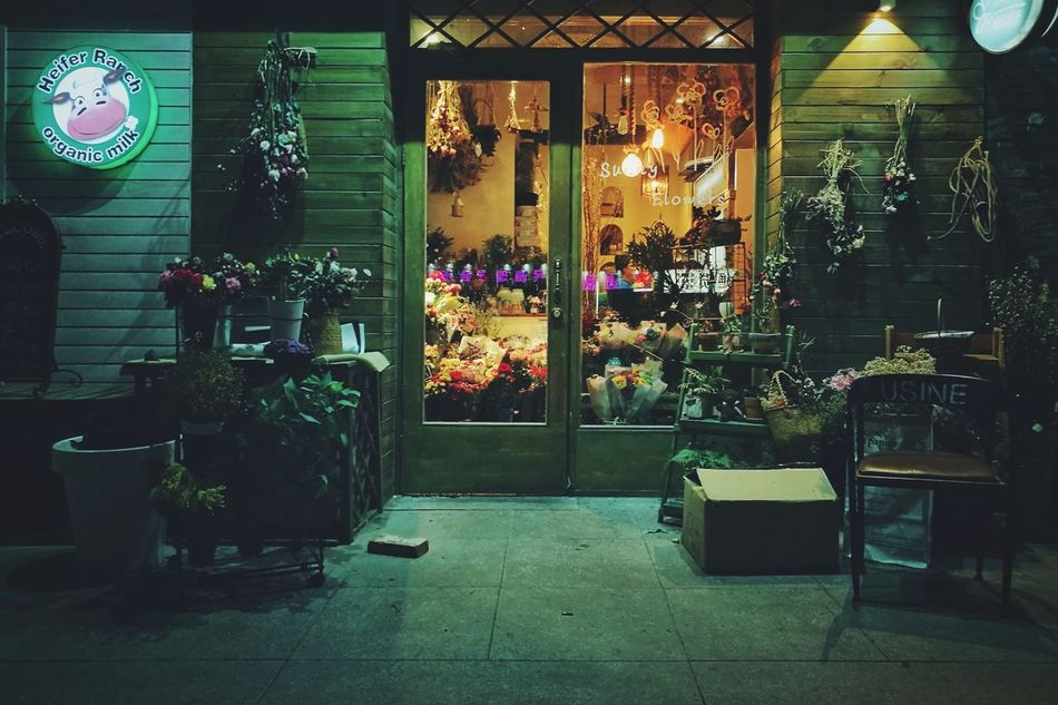 Window Illuminated Light And Shadows Capture The Moment Huawei P9 Photos Quiet Place  Quiet Place  Green Color Flower Quiet Place  Night The Shop Around The Corner Flower Shop