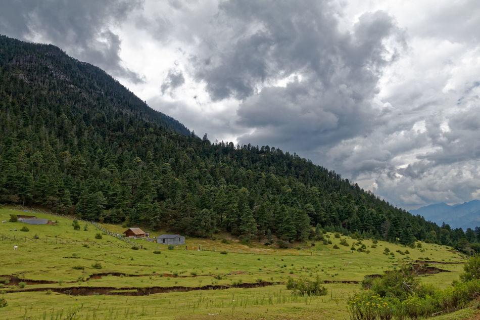 El Tarillal Beauty In Nature Cloud - Sky Cloudy Farm Field Green Color Landscape Mountain Outdoors Rural Scene Scenics Sky Tranquil Scene Scenics