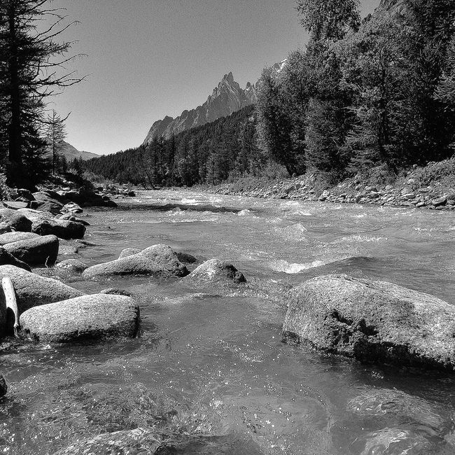 Blackandwhite Enjoying Life Relaxing Nature Peace Landscape