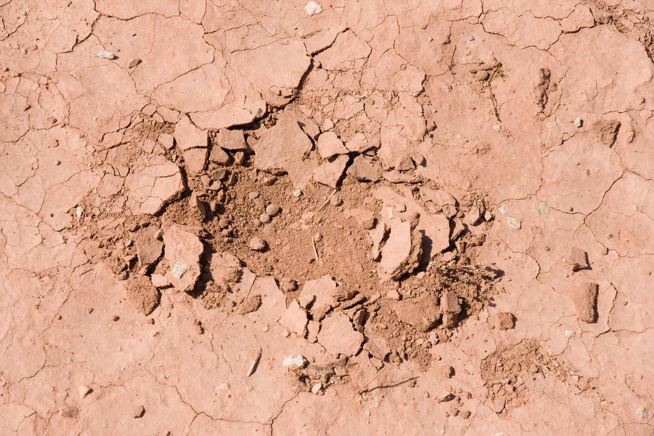 Arid Climate Backgrounds Close-up Cracked Day Land Mud Nature No People Outdoors Sand Space Textured