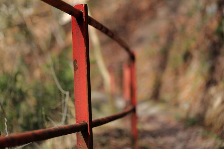 Rusty red handrail. Banister Beauty Of Decay Built Structure Diminishing Perspective Eye4photography  EyeEm Best Shots EyeEm Gallery EyeEm Nature Lover Forest Handrail  Hiking Metal Minimalism Nature No People Old Outdoors Path Protection Railing Rusty Safety The Way Forward Traditional Zürcher Oberland
