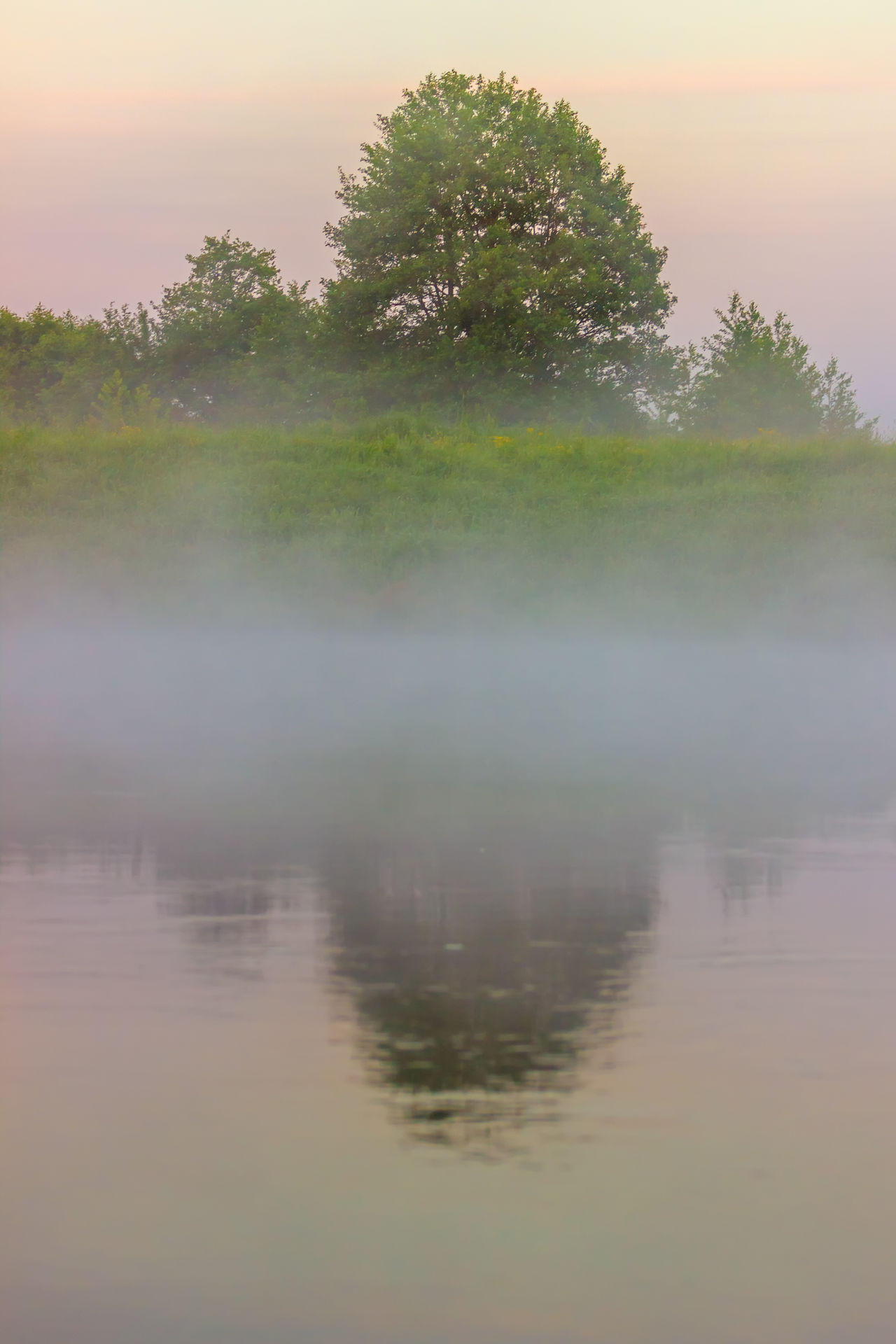 Fog over the river. Early morning. Beauty Beauty In Nature Day Fog Lake Landscape Morning Nature No People Outdoors Reflection River Scenics Tranquility Tree Water