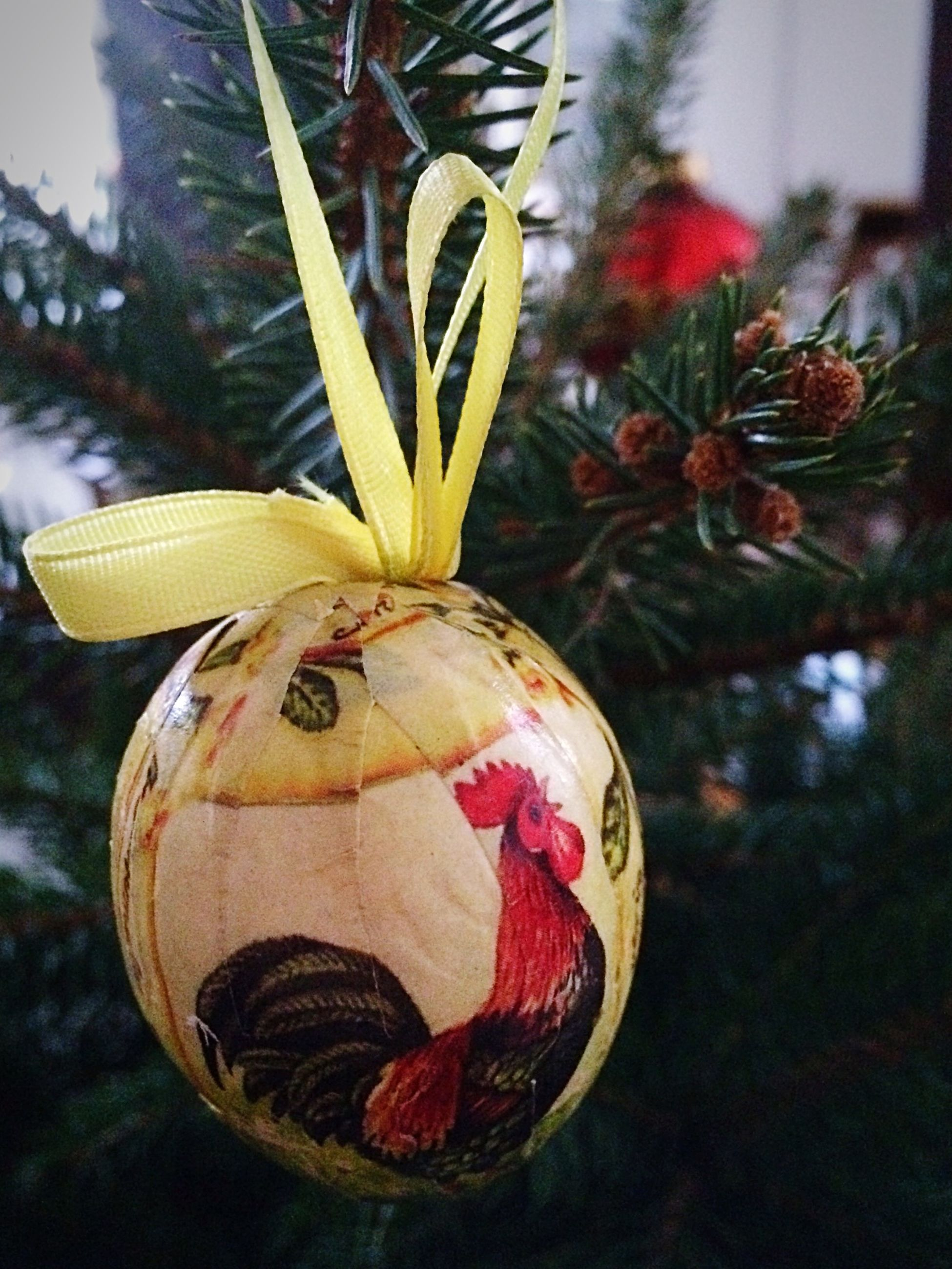 focus on foreground, close-up, growth, tree, decoration, plant, no people, day, hanging, outdoors, still life, red, nature, art and craft, sunlight, flower, art, creativity, selective focus, cultures