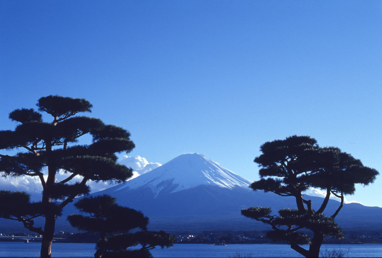 Beauty In Nature Blue Blue Sky Clear Sky Fujisan Japan Japan Photography Japanese Style Lake Lake View Landscape Landscape_Collection Landscape_photography Mountain Mountain View Mountains And Sky Mt.Fuji Nature Nature Photography Nature_collection Outdoors Scenics Tranquil Scene Tranquility Tree