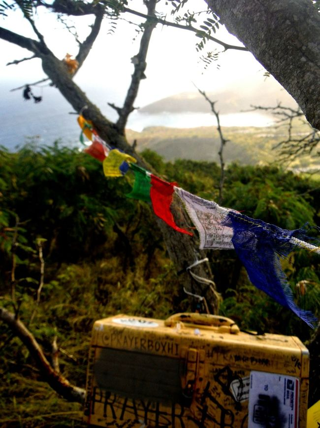 Although the creator of this lovely little treasure remains unknown, the love and good vibrations continue on in every hiker who finds this secret spot atop the mountain. Follow your heart and spread love in this world. On Top Of A Mountain Koko Head  Oahu Hawaii Tibetan Prayer Flags Prayer Flags  Hikerslife Pleasant Surprise Love Life The Following Spread Love We Are One Looking Out Sea View Trees And Sea Distant Sea Koko Head Hike Kokohead Koko Head TrailOahu, Hawaii Oahu Love Oahu Life Oahuphotography Fujifilm Finepix Xp60