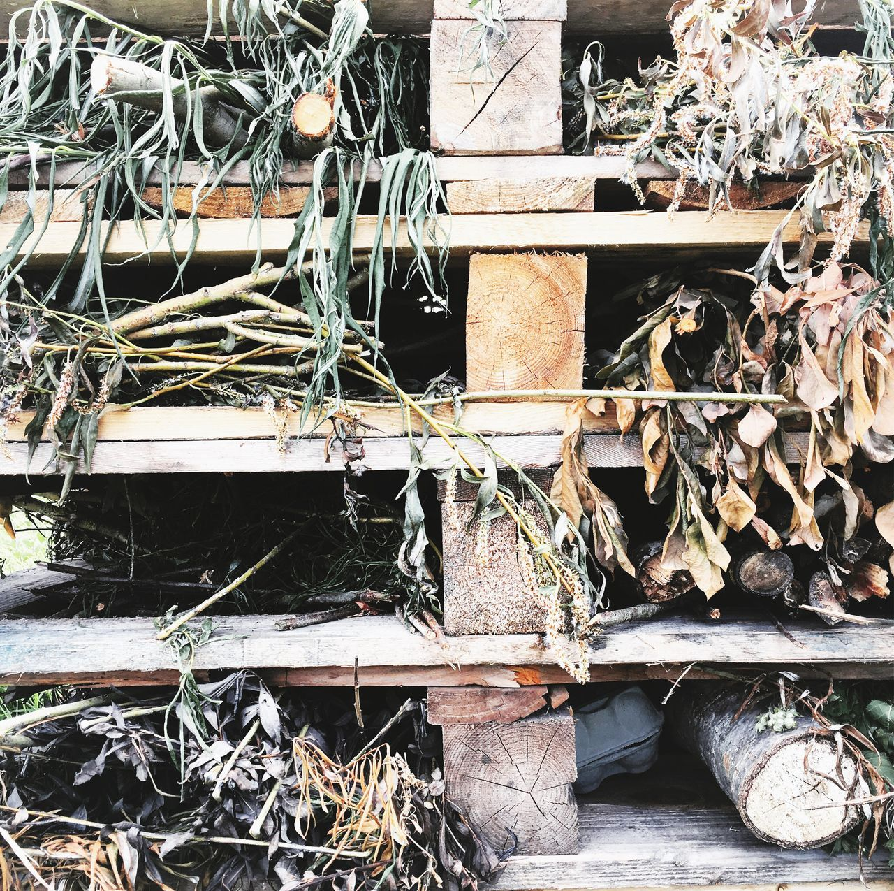 Insect hotel Stack No People Day Outdoors Bugs Beauty In Nature Buglife NatureReserve Nature