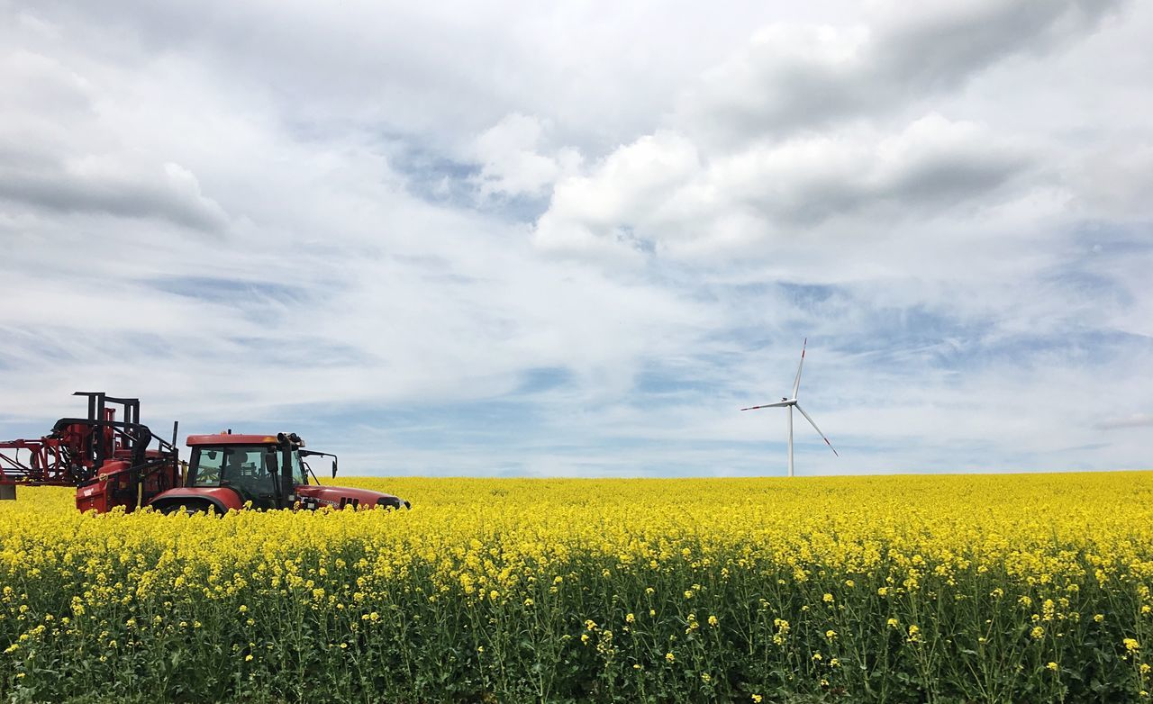 Rapeseed Field Field Rapeseed Yellow Fieldscape Agriculture Landscape Beauty In Nature Sky And Clouds Tractor Red Tractor Outdoors Germany Wind Turbine