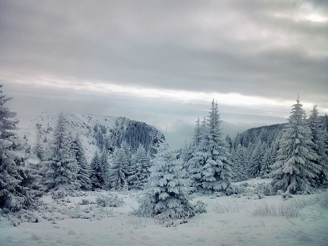 Edge Of The World Winter Mountains Snow Frozen Nature Mountains And Sky Traveling Landscape My Winter Favorites From My Point Of View at Kopaonik, Serbia It's Cold Outside Landscapes With WhiteWall