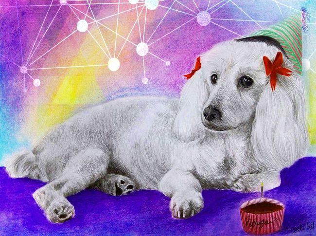 Pechuga✨💕 Love Drawing ❤ Drawing Dogs Taking Photos