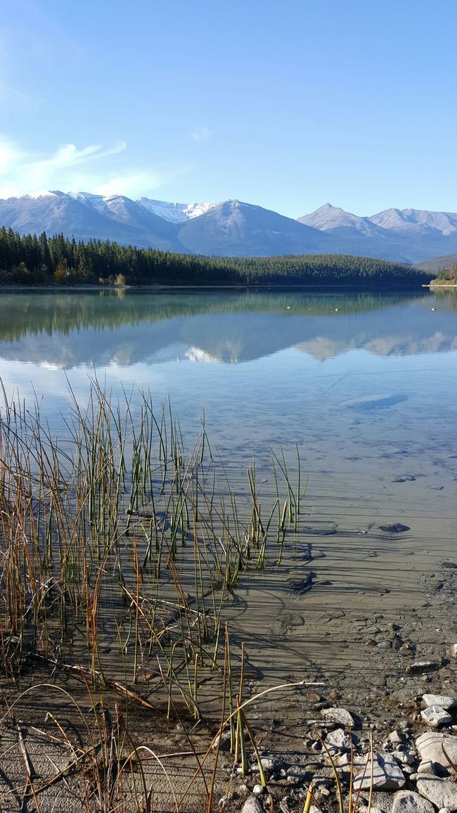 Mountain Water Scenics Tranquil Scene Lake Tranquility Reflection Beauty In Nature Non-urban Scene Nature Mountain Range Sky Majestic Calm Outdoors Day No People Tourism Remote Standing Water Pyramid Lake Jasper Canada