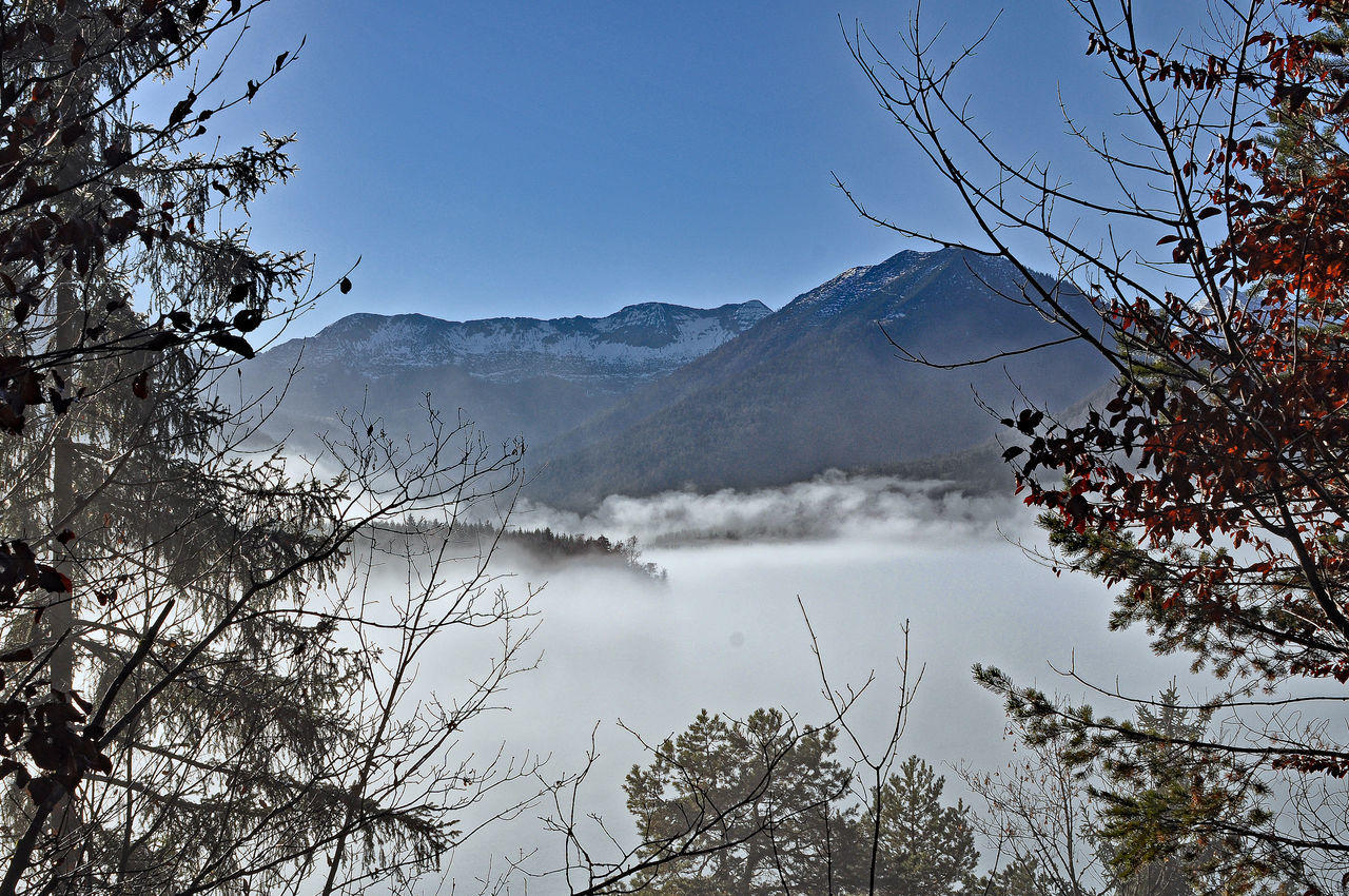 upper isar valley in fog Beauty In Nature Cloud Cloudy Cold Cold Temperature In Fog Landscape Light Majestic Mountain Mountain Range Nature Non-urban Scene Outdoors Scenics Sky Tranquil Scene Tranquility Upper Isar Valley Weather Winter
