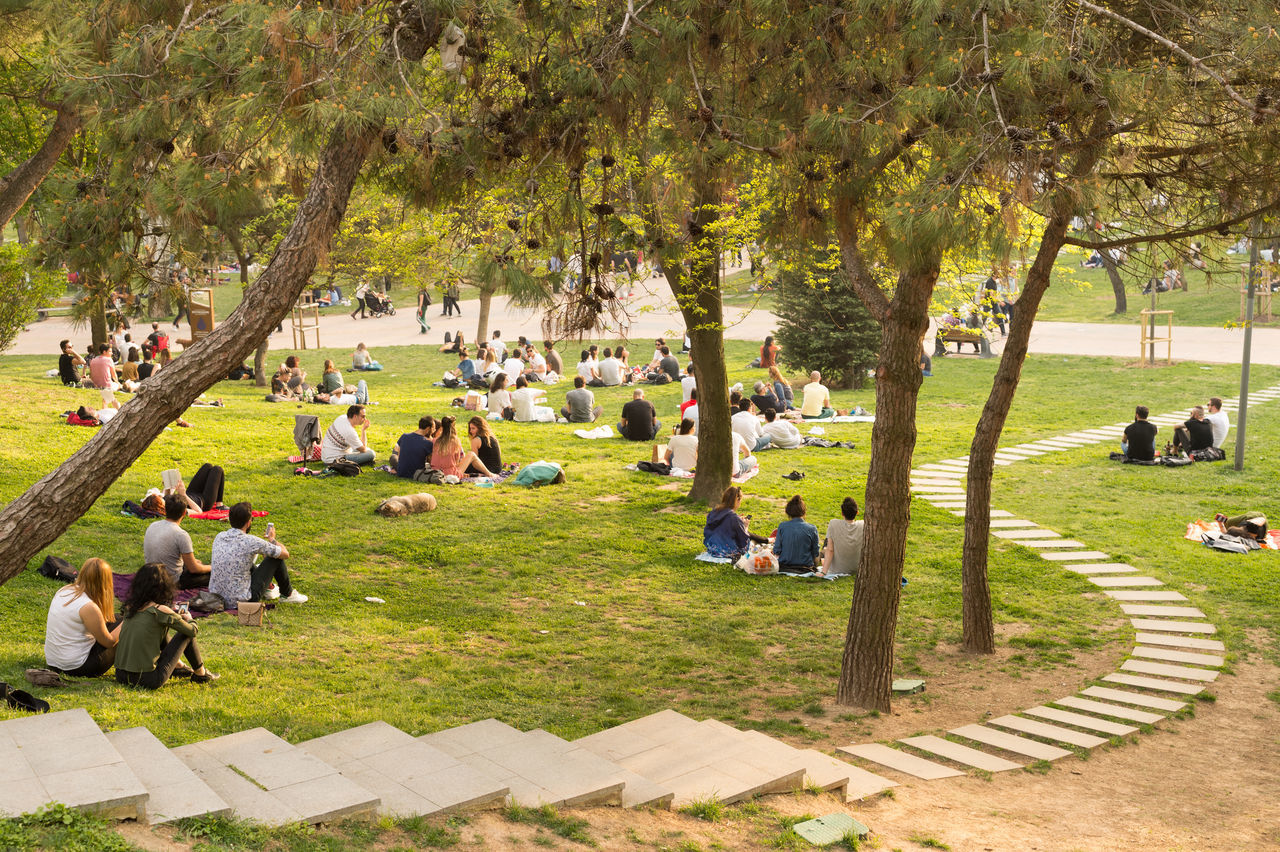 Enjoying Sunny Spring Day in the Park Beauty In Nature Branch Day Grass Istanbul Istanbul Turkey Large Group Of People Leisure Activity Lifestyles Men Nature Nature On Your Doorstep Nature Photography Nature_collection Naturelovers Outdoors Park Park - Man Made Space People Real People Relaxation Tree Walkway Women The Architect - 2017 EyeEm Awards
