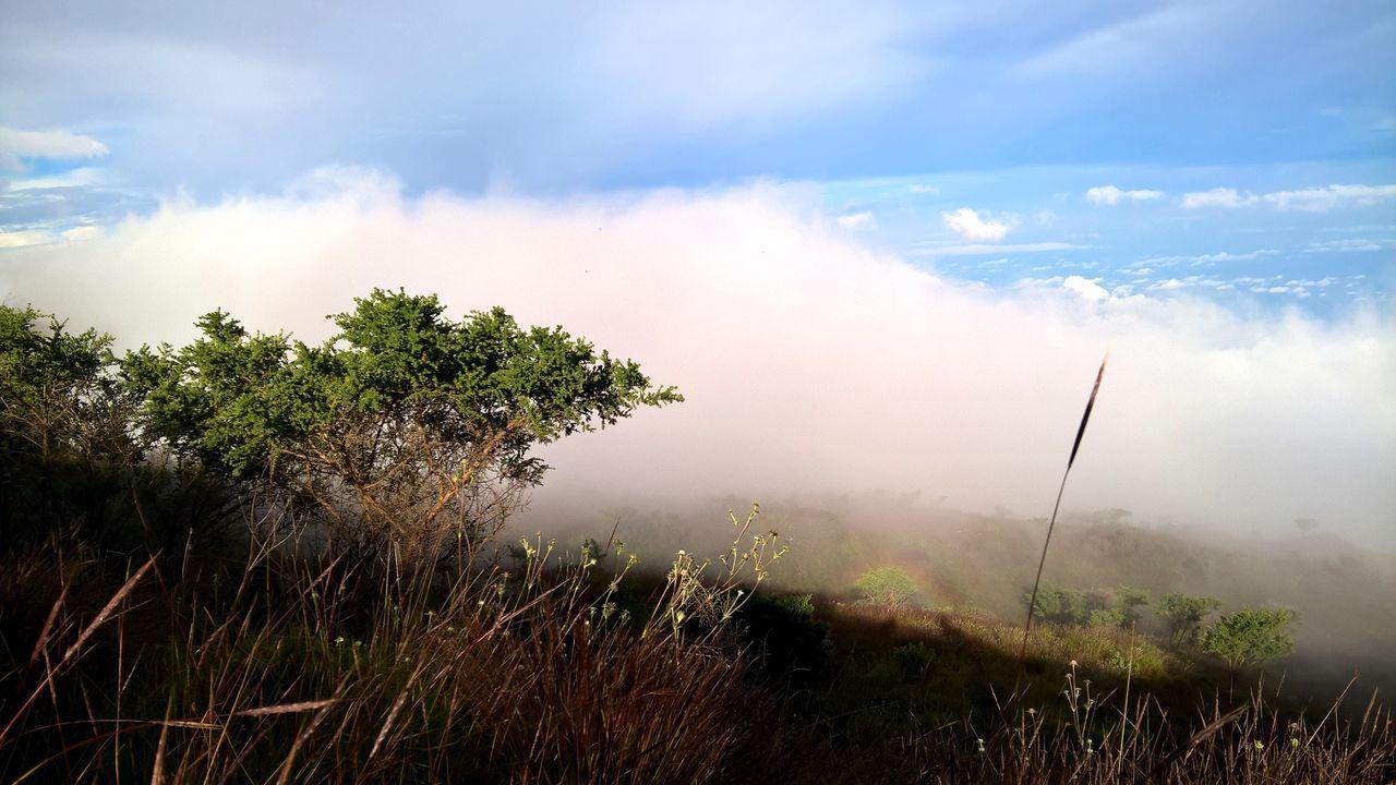 Cameroon Climbing Cloud Fog Hiking Mount Cameroon Mountain Rainbow