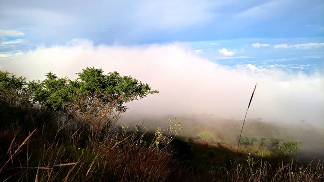 Cameroon Climbing Cloud Fog Hiking Mount Cameroon Mountain Rainbow
