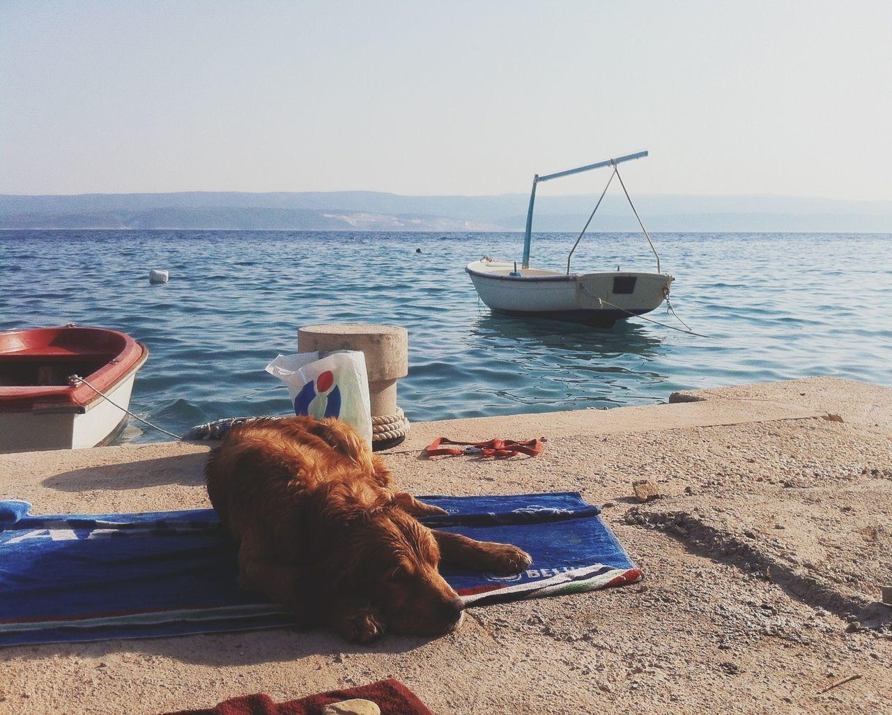 AMPt_community Vscocam Croatia Summer Views