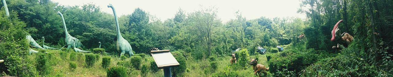 Kentucky  Dinoworld Dinosaur World Tree Growth Green Color Day Nature Outdoors No People Grass Beauty In Nature Sky Panoramic Photography Panorama