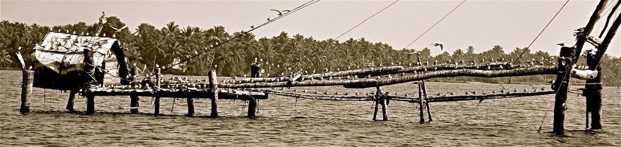 Backwaters Blackandwhite India Kerala Landscape Travel Destinations